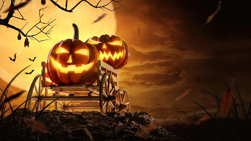 Хэллоуин история праздника и традиции