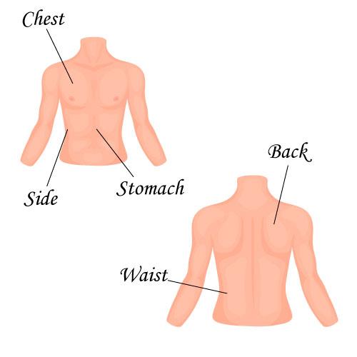 Слова по теме части тела на английском языке