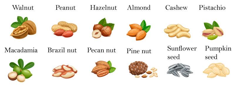 Орехи и сухофрукты на английском