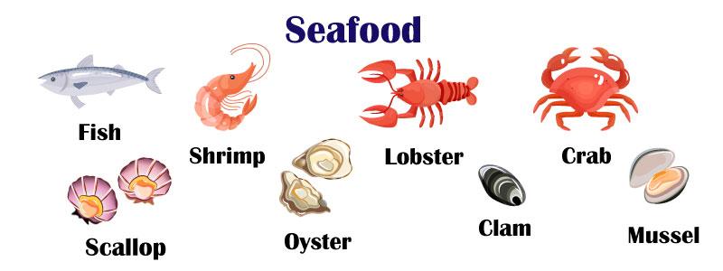 Мясо и морепродукты на английском языке