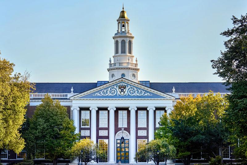 Колледж и университет в США разница